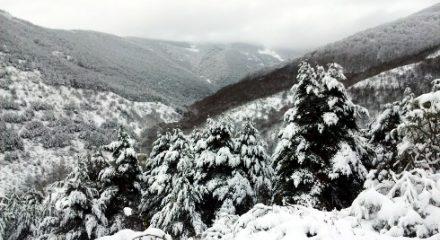 entrenamiento-nevado-supercalcetines