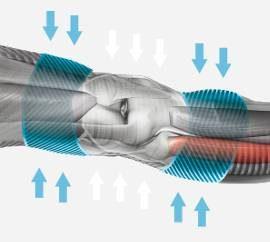 X-Bionic Neural Response Effect
